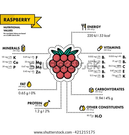 Raspberry - nutritional information. Healthy diet. Simple flat infographics with data on the quantities of vitamins, minerals, energy and more.