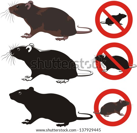 rat, rodent - warning signs - stock vector