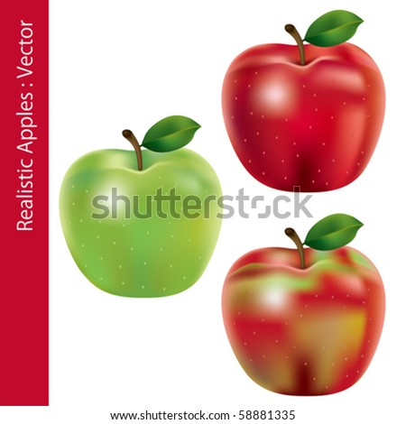 Realistic Apples Set - stock vector