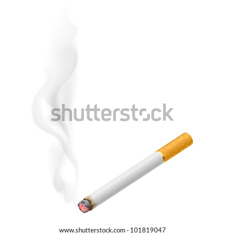 Realistic burning cigarette.  Illustration on white background