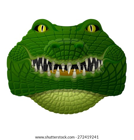 Realistic crocodile face looks ahead. Front view of isolated alligator head. Qualitative vector illustration for zoo, sports mascot, circus, wildlife, nature, etc - stock vector