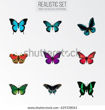 Lady Butterfly Stock Vectors, Images & Vector Art | Shutterstock