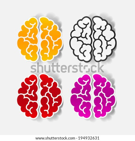 realistic design element: brain. Vector Illustration - stock vector