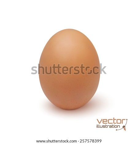 Realistic egg icon, isolated on white background. Vector illustration - stock vector