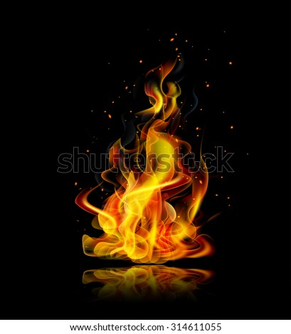 Realistic fire with reflection on a black background - stock vector