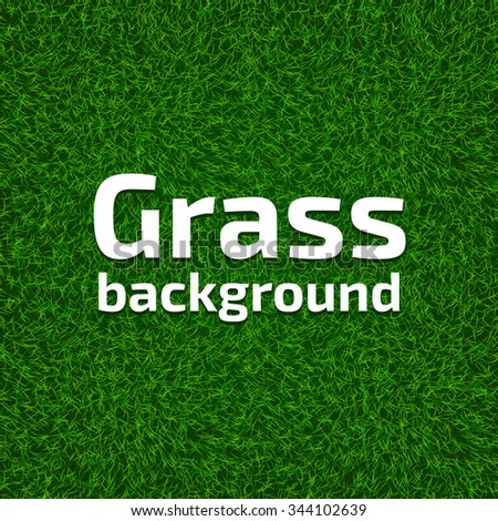 Realistic green grass background. Beautiful fresh lawn grass texture. Vector illustration for your design. - stock vector