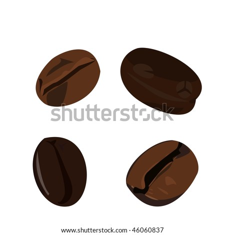 Realistic illustration coffee bean - vector