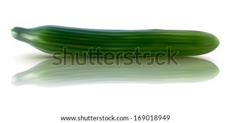 realistic illustration of fresh cucumber - vector illustration