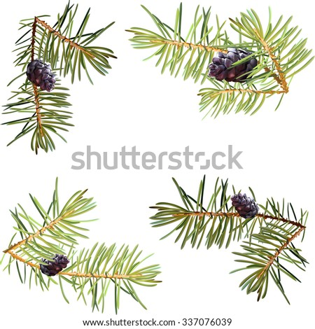 Realistic needles, spruce branches Christmas tree, isolated detailed vector, frame of spruce branches, template for design, bump - stock vector