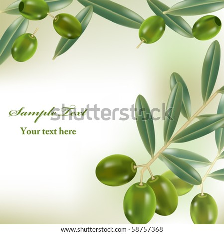 Realistic olives background. Illustration vector. - stock vector