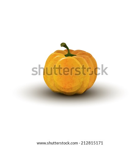 realistic pumpkin on Halloween isolated - stock vector