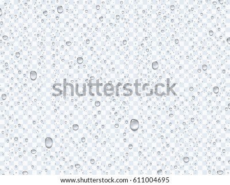 Realistic pure water rain drops or steam shower isolated on transparent background. Vector clear vapor bubbles on window glass surface for your design