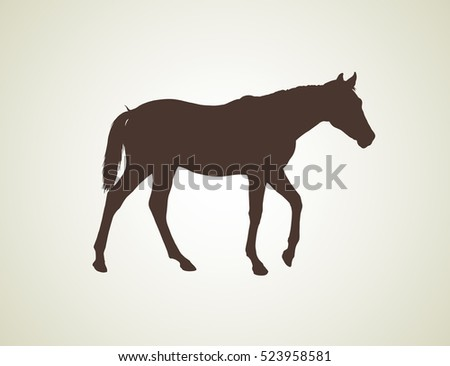 realistic silhouette young horse, vector illustration