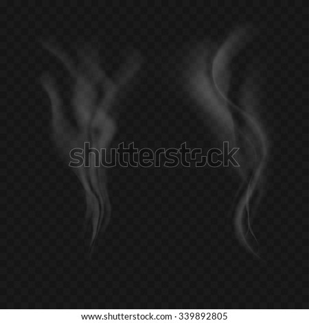 realistic smoke on black background vector illustration - stock vector