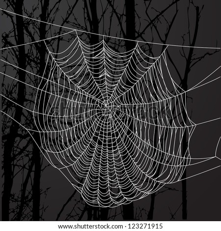 Realistic spider web over black background with tree. - stock vector
