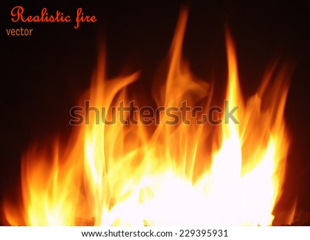 Realistic vector fire on black background