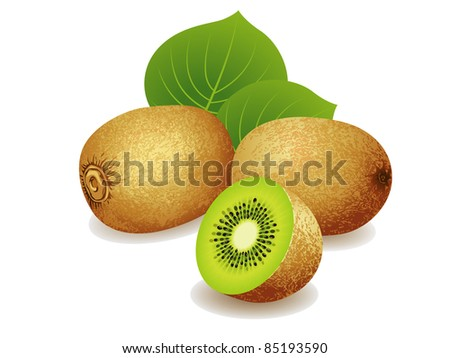 Realistic vector illustration of a bunch of kiwi fruits. - stock vector