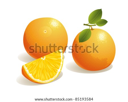 Realistic vector illustration of an orange and a slice of orange fruit. - stock vector