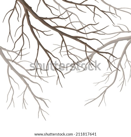 Realistic vector tree branches silhouette isolated on white background - stock vector