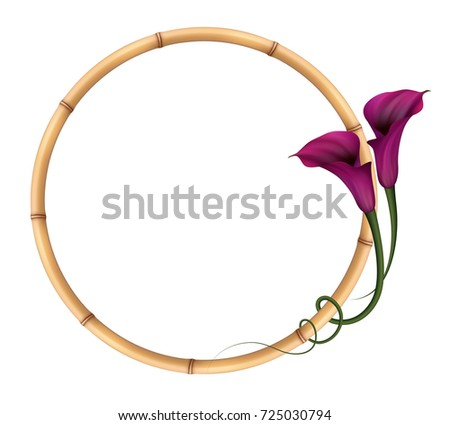 Realistic Violet Calla Lily Bamboo Frame Stock Photo (Photo, Vector ...