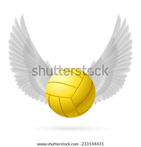 Realistic volley ball with white wings emblem - stock vector