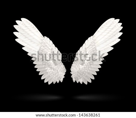 Realistic White Wings on black background - stock vector