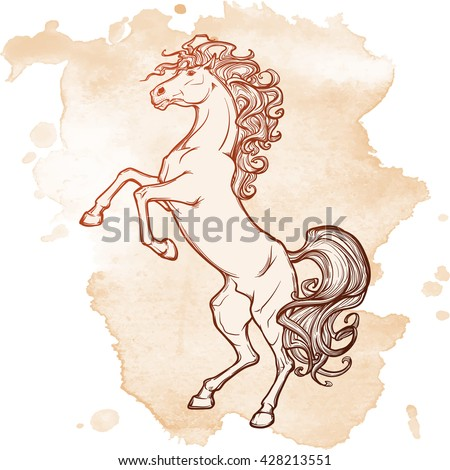Rearing horse with curly tail and mane. Horse stood up on it's hind legs. Sketch on grunge background. EPS10 vector illustration.