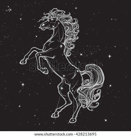 Rearing horse with curly tail and mane. Star constellation of Horse stood up on it's hind legs. White sketch on black nightsky background with stars. EPS10 vector illustration.