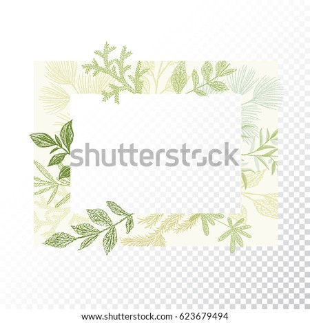 Rectangular Floral Frame Ornament Vector Green Branches And Leaves Border Transparent Background