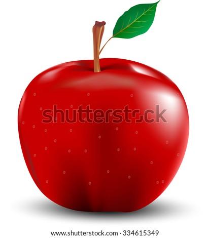 Red apple with leaf illustrator design - stock vector