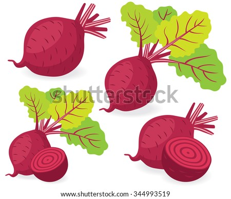 Red beetroot with leaves whole and cut isolated on white background, collection of vector illustrations - stock vector