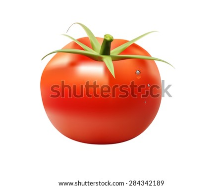 red big fresh tomato isolated on white background. - stock vector