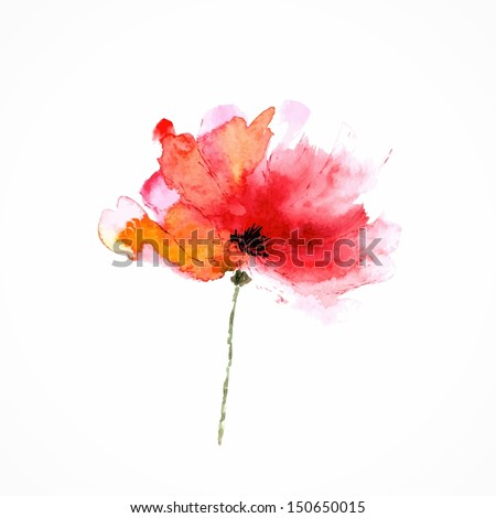 Red flower. Poppy. Watercolor floral illustration. Floral decorative element. Vector floral background. - stock vector