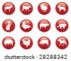 red icon buttons animals - stock vector