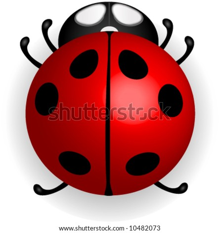 Red ladybug vector. - stock vector