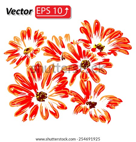 red orange daisy flower watercolor Daisy Vector Flowers isolated on white background vector illustration - stock vector