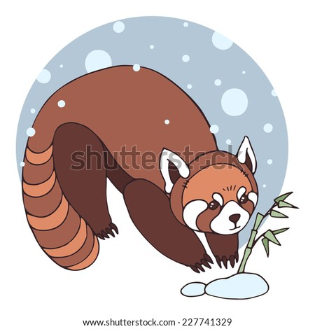Red panda. Vector illustration with cute red panda and bamboo. - stock vector