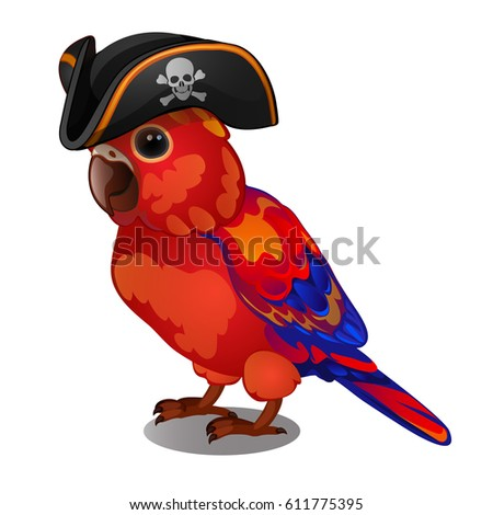Cocked Hat Stock Images RoyaltyFree