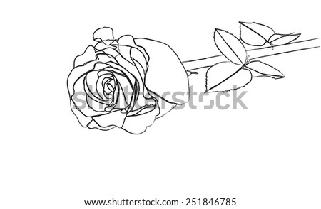 Red rose - stock vector