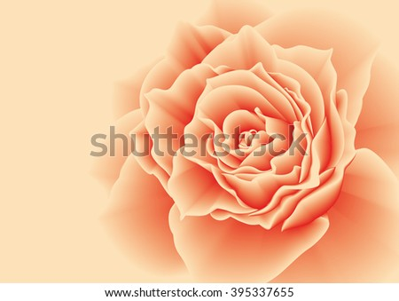 Red rose on a pink background. Vector illustration.