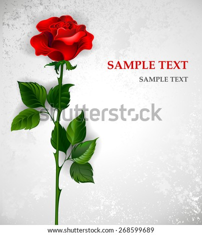 red rose with a straight stem and green leaves on a light background.  - stock vector