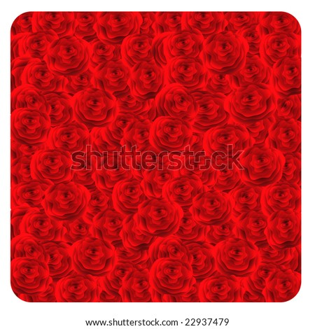 Red roses background. Vector-Illustration.