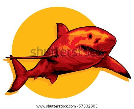 Red Shark illustration - stock vector