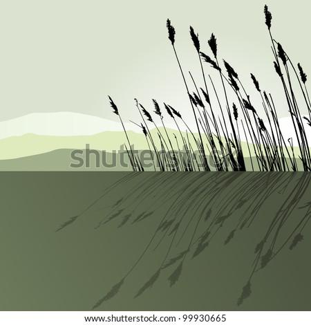 Reeds in the water  - vector - stock vector
