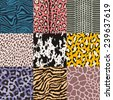 repeated wildlife animal skin texture - stock vector