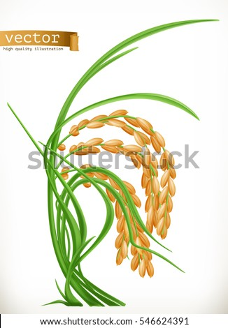 Rice, 3d vector icon