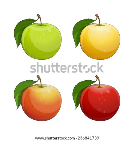 Ripe apple with green leaf. Set of Eps10 vector illustration. Isolated on white background - stock vector