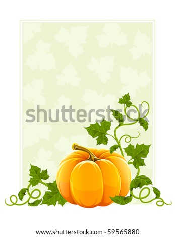 ripe orange pumpkin vegetable with green leaves - stock vector