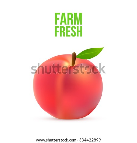 Ripe peach with a green leaf on a white background Vector - stock vector