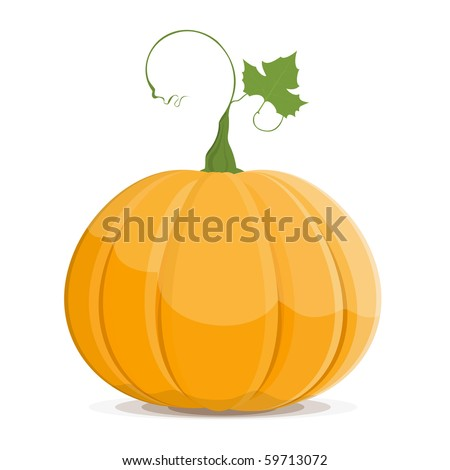 Ripe Pumpkin vegetable fruit isolated on white background. Vector. EPS8 - stock vector